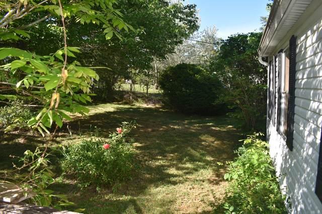 179 3rd St, Corryton, TN 37721 (#1155022) :: JET Real Estate