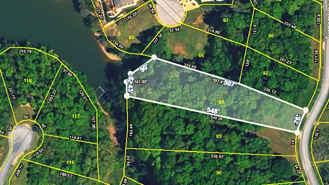 1995 Turners Landing Rd, Russellville, TN 37860 (#1155035) :: Realty Executives Associates