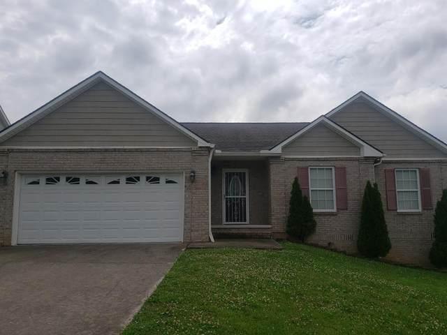 4117 Riverstone Lane, Knoxville, TN 37918 (MLS #1155112) :: Austin Sizemore Team