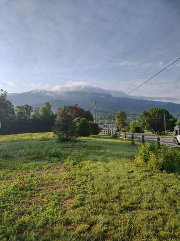 Lot 20-R Laurelwood Ave, Sevierville, TN 37862 (#1155317) :: A+ Team