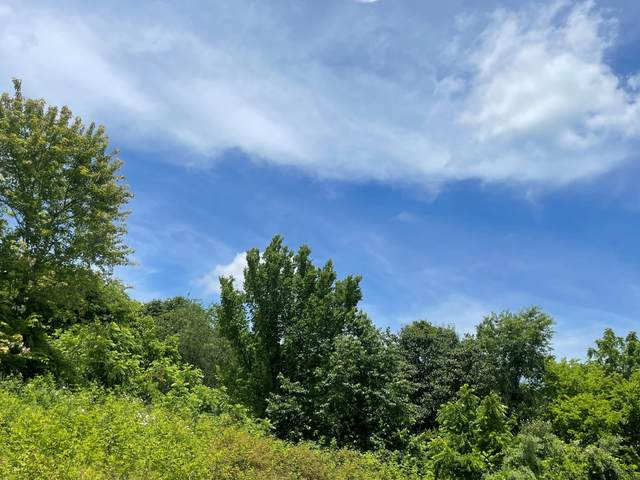Lot 21 Clydesdale Ave, Seymour, TN 37865 (#1155382) :: Realty Executives Associates