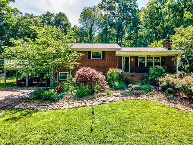 11012 Thornton Drive, Knoxville, TN 37934 (#1155485) :: Catrina Foster Group