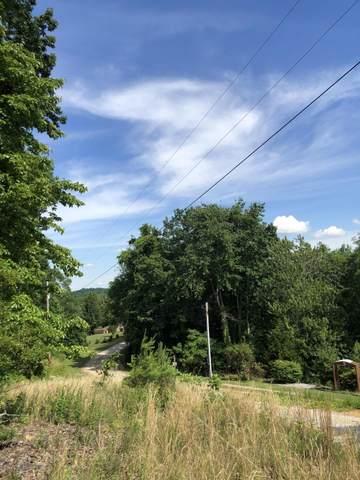 Lake Overlook Drive, Rockwood, TN 37854 (#1155533) :: Realty Executives Associates