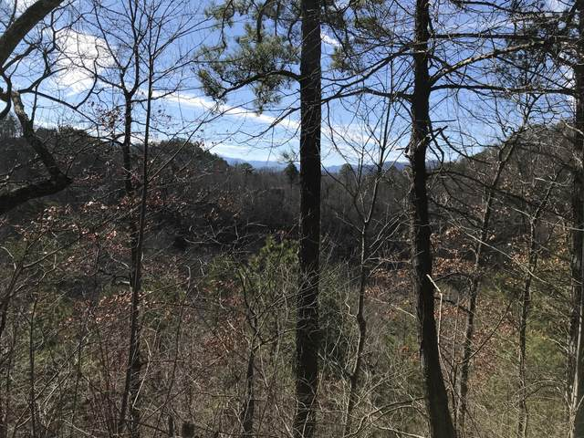 Sugar Maple Loop Rd, Sevierville, TN 37862 (#1155613) :: The Terrell-Drager Team