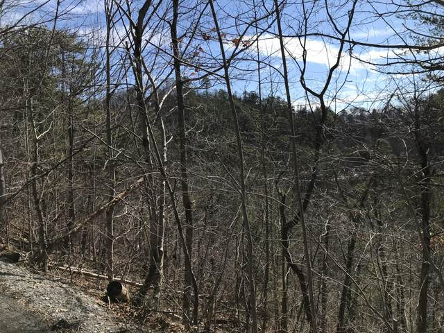 Sugar Maple Loop Rd, Sevierville, TN 37862 (#1155626) :: The Terrell-Drager Team
