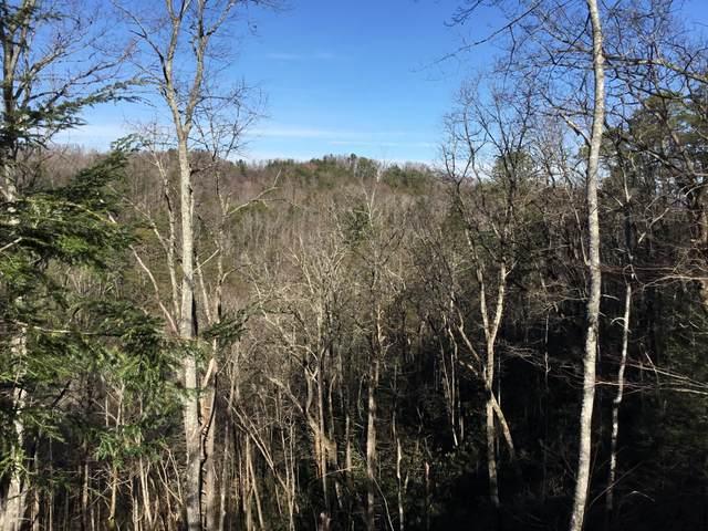 Lot 261 Ski View Lane, Sevierville, TN 37876 (#1155657) :: Catrina Foster Group