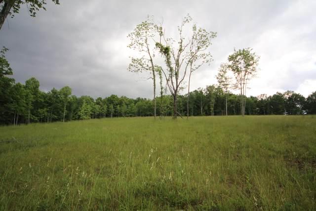 Louvaine Road, Jamestown, TN 38556 (#1155818) :: The Cook Team