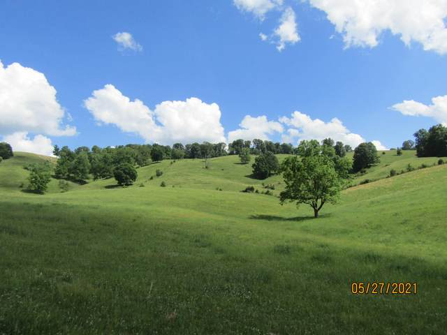 Little Valley Road - Off, Tazewell, TN 37879 (#1155843) :: Catrina Foster Group