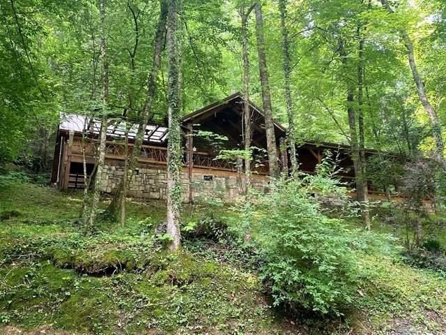 8540 Towns End Lane, Townsend, TN 37882 (#1155919) :: JET Real Estate
