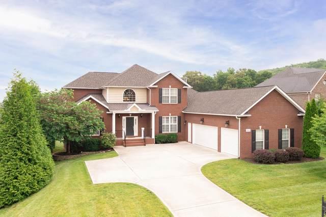 12832 Night Heron Drive, Knoxville, TN 37922 (#1156146) :: Catrina Foster Group