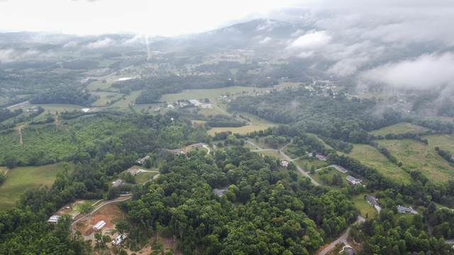 Murphy Farm Way, Sevierville, TN 37876 (#1156173) :: The Terrell-Drager Team