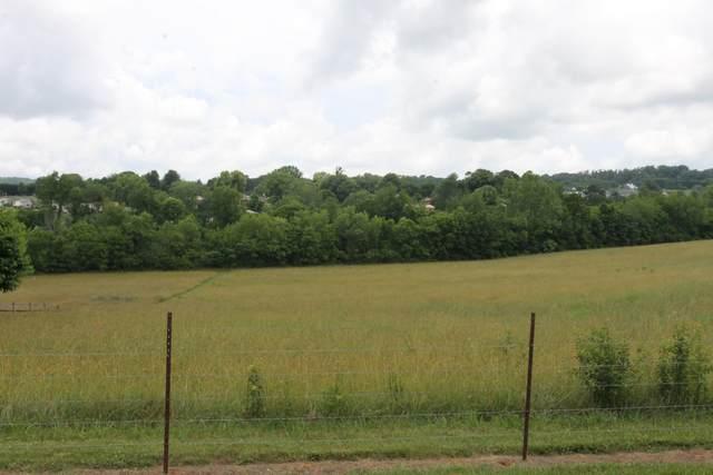 000 Nails Creek Rd, Seymour, TN 37865 (#1156233) :: The Cook Team