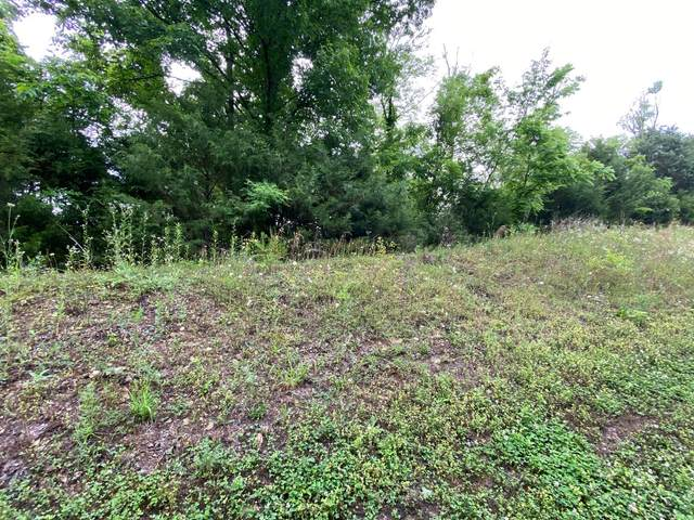 Lot 147 Eagle Feather Drive, Sevierville, TN 37876 (#1156263) :: Billy Houston Group