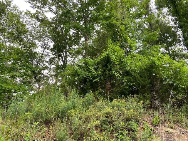 Lot 54 Wingspan Drive, Sevierville, TN 37876 (#1156273) :: The Cook Team