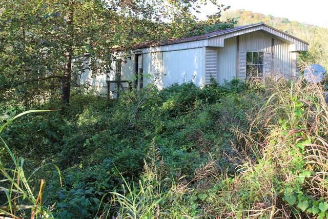 1076 Highway 66, Sneedville, TN 37869 (#1156287) :: Billy Houston Group