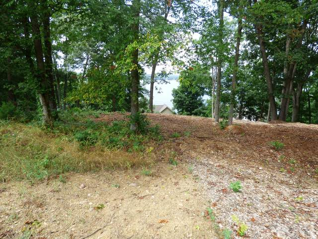 Lots 1123 Mtn View Ln/Lakefront Pl, Baneberry, TN 37890 (#1156293) :: The Cook Team