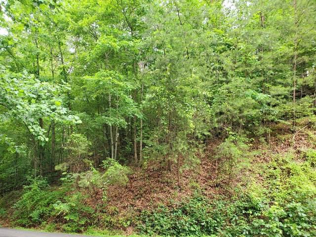 Lots on Bear Mountain Lane, Sevierville, TN 37876 (#1156298) :: The Cook Team