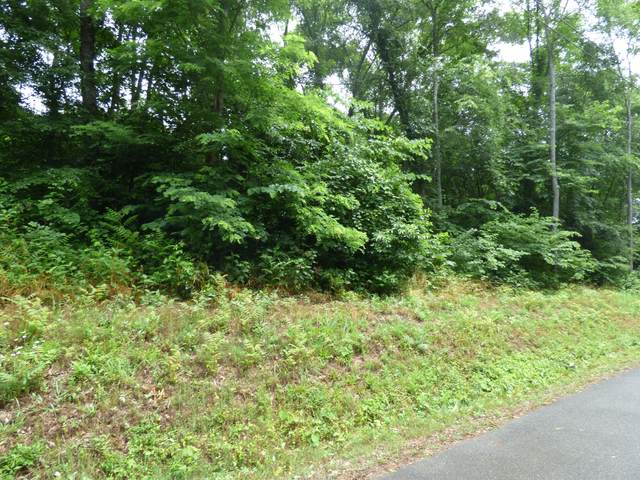 Lot 1134 Mountain View Ln, Baneberry, TN 37890 (#1156309) :: The Cook Team