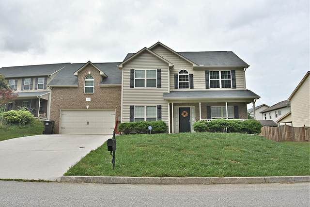 11645 Edison Drive, Knoxville, TN 37932 (#1156319) :: Billy Houston Group