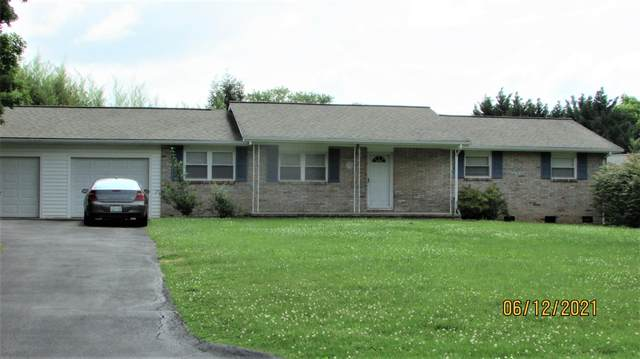 816 Owl Hollow Rd, Knoxville, TN 37923 (#1156379) :: Realty Executives Associates