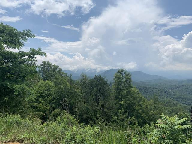 Settlers View Lane, Sevierville, TN 37862 (#1156495) :: JET Real Estate