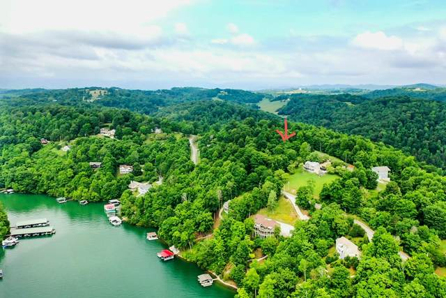 Norris View Lane, LaFollette, TN 37766 (#1156572) :: Catrina Foster Group