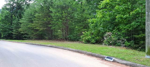 1625 Mountain Dreams Way, Sevierville, TN 37862 (#1156610) :: Catrina Foster Group