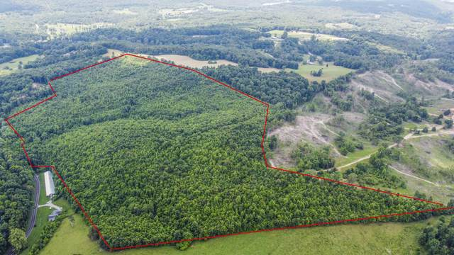 Hines Valley Rd, Loudon, TN 37774 (#1156631) :: Catrina Foster Group