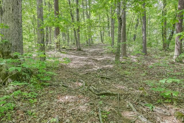 Shular Hollow Way, Sevierville, TN 37876 (#1156651) :: Catrina Foster Group