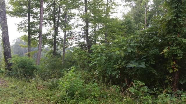 lot 65 Cheri Lane, Caryville, TN 37714 (#1156666) :: Catrina Foster Group