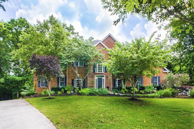 6446 Mont Richer Ave, Knoxville, TN 37918 (#1156703) :: JET Real Estate