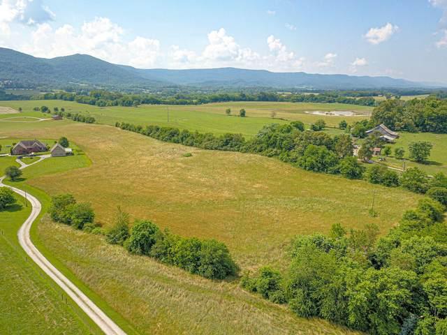Brilin River Estate Rd, Pikeville, TN 37367 (#1156705) :: Catrina Foster Group