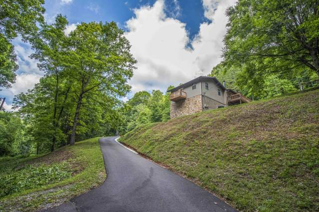 222 Tobby Hollow Lane, Knoxville, TN 37931 (#1156706) :: Catrina Foster Group