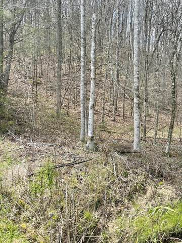 Lot 8 Rule Way, Sevierville, TN 37876 (#1156707) :: Catrina Foster Group