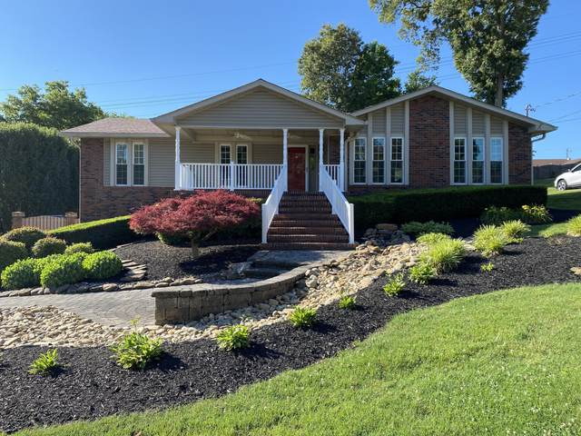 7321 Homestead Drive, Knoxville, TN 37918 (#1156711) :: A+ Team