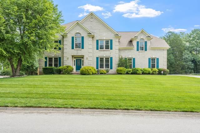 149 Saddle Ridge Drive, Knoxville, TN 37934 (#1156831) :: JET Real Estate
