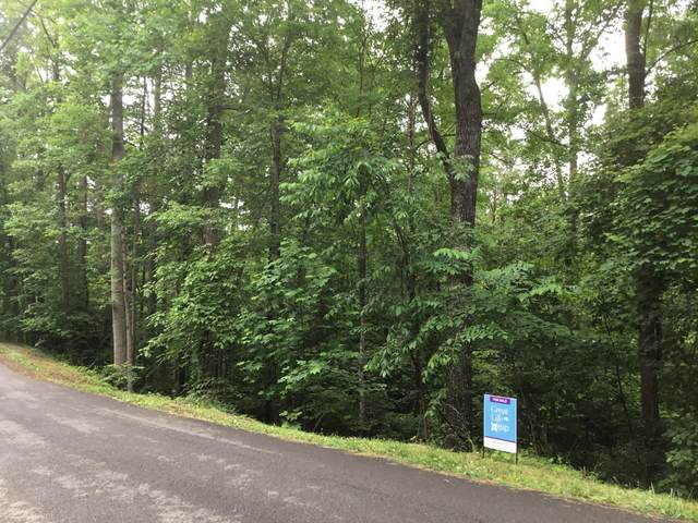 S Mountain View Rd, Sevierville, TN 37876 (#1156863) :: The Terrell-Drager Team
