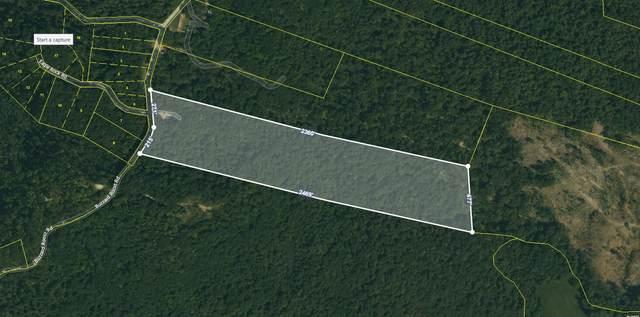 Buzzard Roost Rd, Jamestown, TN 38556 (#1156917) :: Cindy Kraus Group   Realty Executives Associates