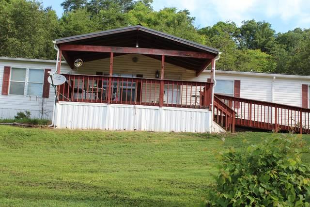 119 Griffin Drive, Dandridge, TN 37725 (#1156987) :: Cindy Kraus Group | Realty Executives Associates