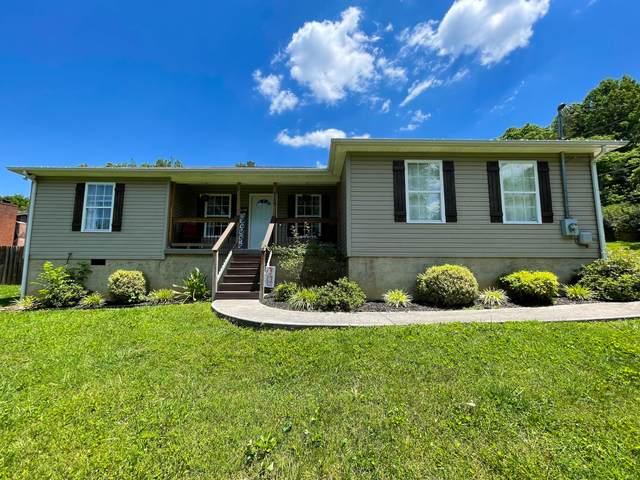 119 Lillian Lane, Maynardville, TN 37807 (#1157010) :: JET Real Estate