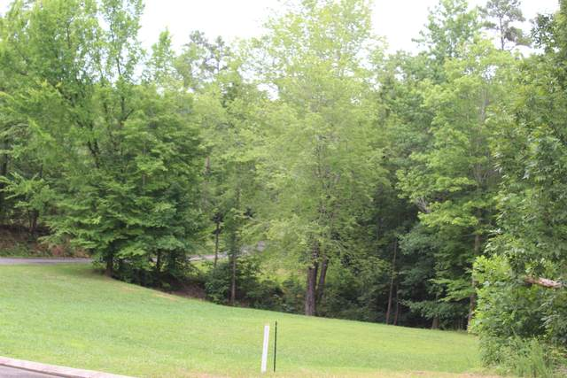 180 Wood Chase Lane, Spring City, TN 37381 (#1157091) :: Billy Houston Group