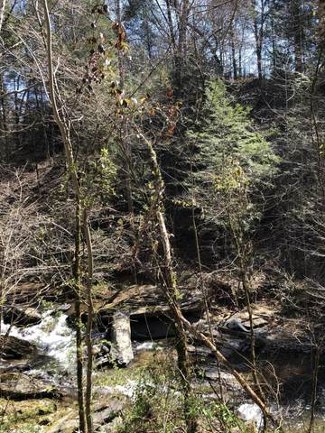 Lot 6 Old Birds Creek Road, Sevierville, TN 37876 (#1157147) :: The Terrell-Drager Team