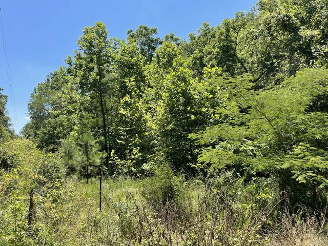 County Road 44, Athens, TN 37303 (#1157244) :: Tennessee Elite Realty