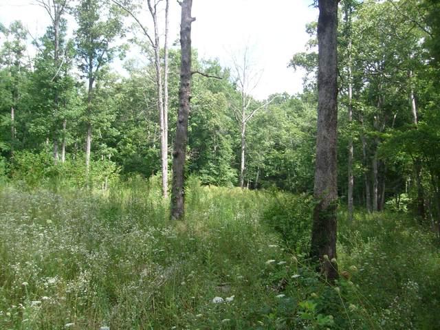 8927 Cherokee Tr, Crossville, TN 38572 (#1157381) :: Cindy Kraus Group   Realty Executives Associates
