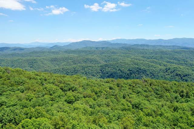 Tower Rd, Tallassee, TN 37878 (#1157434) :: Tennessee Elite Realty