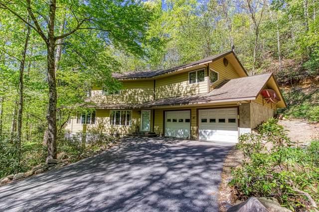 917 Sunshine Trail Tr, Gatlinburg, TN 37738 (#1157459) :: Tennessee Elite Realty