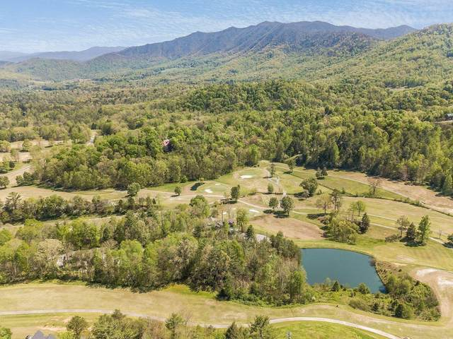 715 Hunters Run Rd, Townsend, TN 37882 (#1157463) :: Tennessee Elite Realty