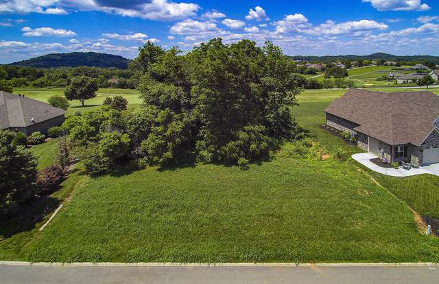 173 Osprey Circle, Vonore, TN 37885 (#1157535) :: Shannon Foster Boline Group