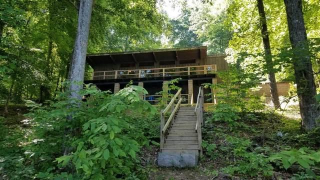 185 Brown Oldham Lane, Spring City, TN 37381 (#1157544) :: JET Real Estate