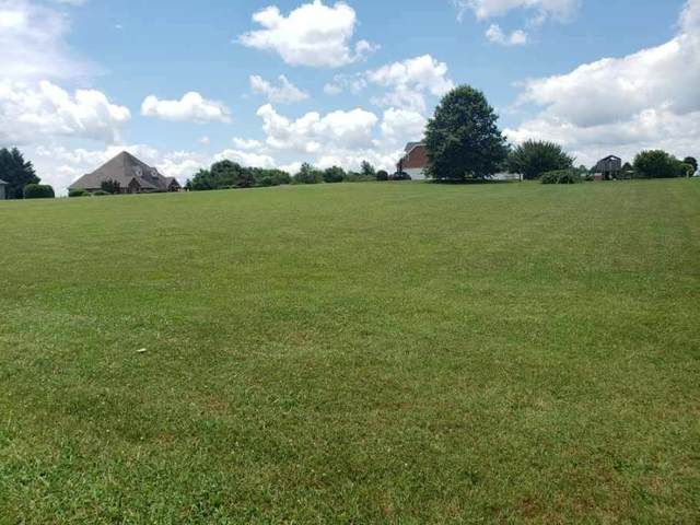 1988 Lakebrook Circle, Dandridge, TN 37725 (#1157565) :: Billy Houston Group
